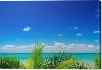 tropical sea Canvas Print