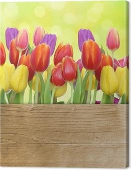 Tulpen mit Holztafel Canvas Print