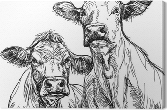 two cows - black and white sketch Canvas Print