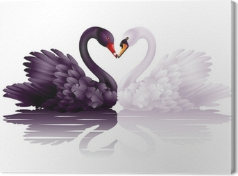 Two graceful swans in love: black-and-white heart Canvas Print