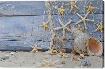 Urlaubserinnerung: Posthornschnecke, Seesterne und Fischernetz Canvas Print