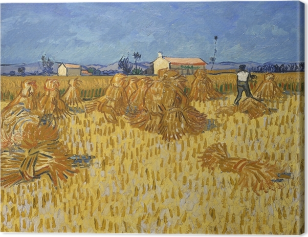 Vincent van Gogh - Harvest in Provence Canvas Print - Reproductions