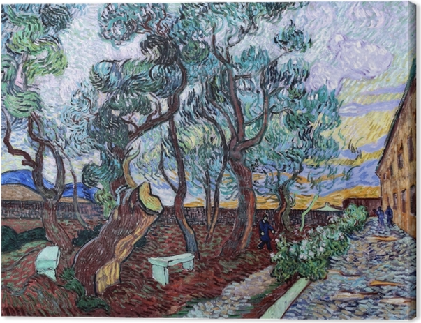 Vincent van Gogh - Hospital garden in St. Remy Canvas Print - Reproductions