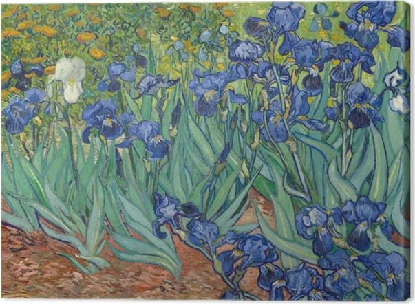 Vincent van Gogh - Irises Canvas Print - Reproductions