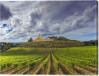 vineyards in the Chianti region of Tuscany, Italy Canvas Print