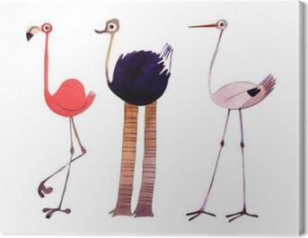 Watercolor bird set. Flamingo,ostrich,stork hand painted illustration Canvas Print