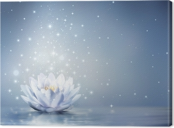 waterlily light blue on water - fairytale background Canvas Print