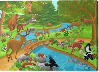 wild animals living in the forest Canvas Print