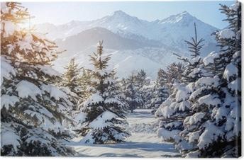 Winter mountain scenery Canvas Print