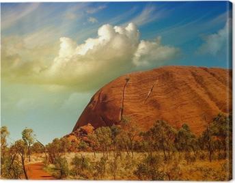 Wonderful Outback colors in Australian Desert Canvas Print
