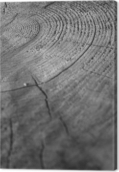 wood Canvas Print