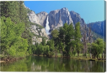 Yosemite Fall Canvas Print