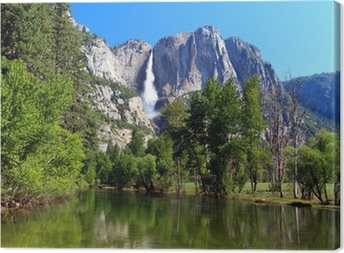 Yosemite Fall Canvas Print