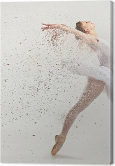 Young ballerina dancer in tutu performing on pointes Canvas Print