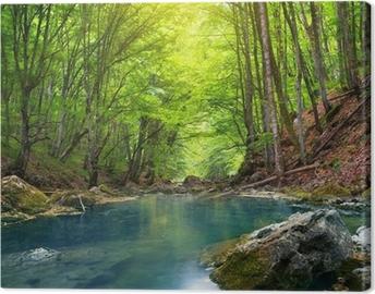 Canvas Rivier in de bergen bos.