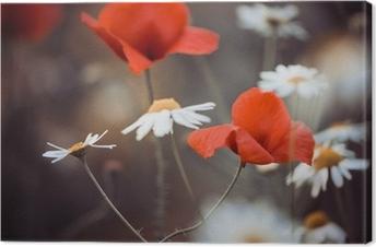 Canvas Rode papaver bloemen en wilde madeliefjes