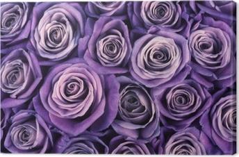 Canvas Rose bloemen achtergrond