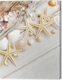Canvas Sea Shells Achtergrond