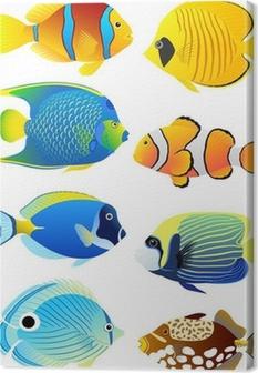 Canvas Set van tropische vissen