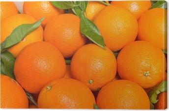Canvas Smakelijke valencian sinaasappels vers verzameld