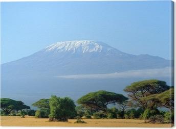 Canvas Sneeuw op de top van de Kilimanjaro