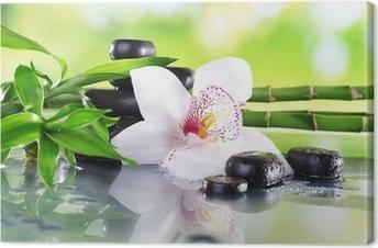 Canvas Spa stenen, bamboe takken en witte orchidee