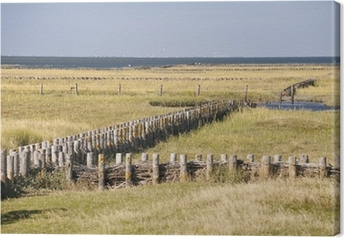 Canvas St. Peter-Ording