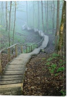 Canvas Staiway in het bos verdwijnen in sterke mist