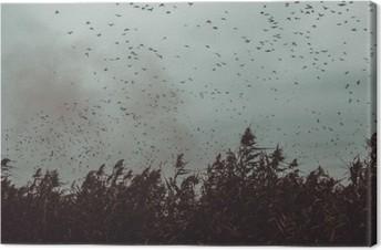 Canvas Stelletje Vogels vliegen in de buurt van riet in een donkere hemel-vintage stijl zwart en wit
