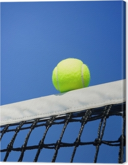 Canvas Tennis ball