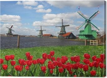 Canvas Traditionele Nederlandse windmolens met rode tulpen, Amsterdam, Nederland