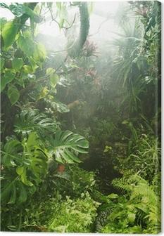 Canvas Tropisch regenwoud