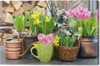 Canvas Tulpen, sneeuwklokjes en narcissen bloeien