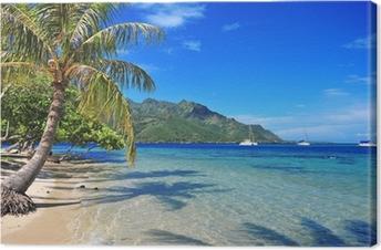 Canvas Turquoise wateren voor de kust Moorea in Tahiti, Frans Polynesië