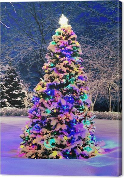 Awesome Kerstboom Buiten Met Verlichting Images - Huis: design ...