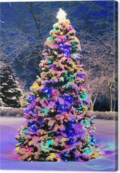 Best Kerstboom Voor Buiten Met Verlichting inspiratie - Ideeën ...