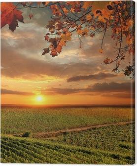 Canvas Vine landschap in Chianti, Italië