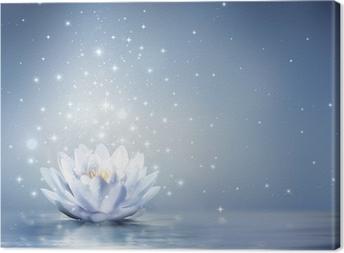 Canvas Waterlelie lichtblauw op water - sprookjesachtige achtergrond