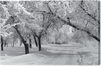 Canvas Winter park, landschap