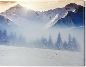 Canvas Winter