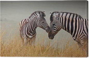 Canvas Zebras - moeder en zoon