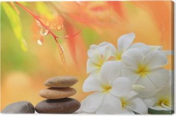 Canvas Zen spa concept achtergrond - Zen massage stenen met frangipani plumeria bloem en water druppels op de achtergrond van de natuur
