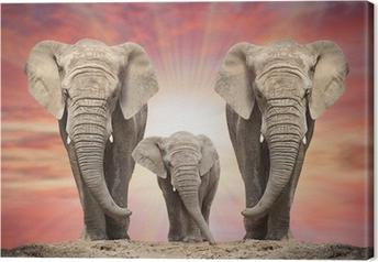 Canvastavla Afrikansk elefant familj på vägen.