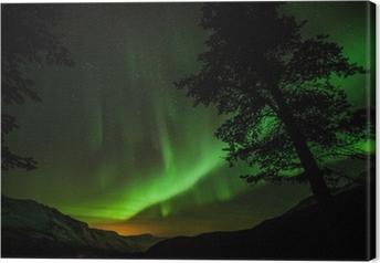 Canvastavla Aurora Borealis (norrsken) i Sverige