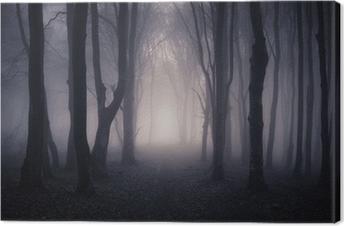 Canvastavla Bana genom en mörk skog på natten