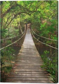 Canvastavla Bro till djungeln, Khao Yai nationalpark, Thailand
