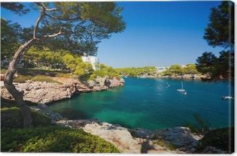 Canvastavla Cala d'Or vik, Mallorca ö, Spanien