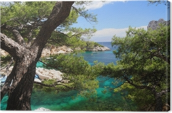 Canvastavla Calanques av Port Pin i Cassis i Frankrike