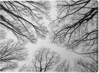Canvastavla Gren av döda träd