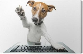 Canvastavla Hund med headset med en bärbar dator • Pixers® - Vi ... 7a3e17cb0f8c3